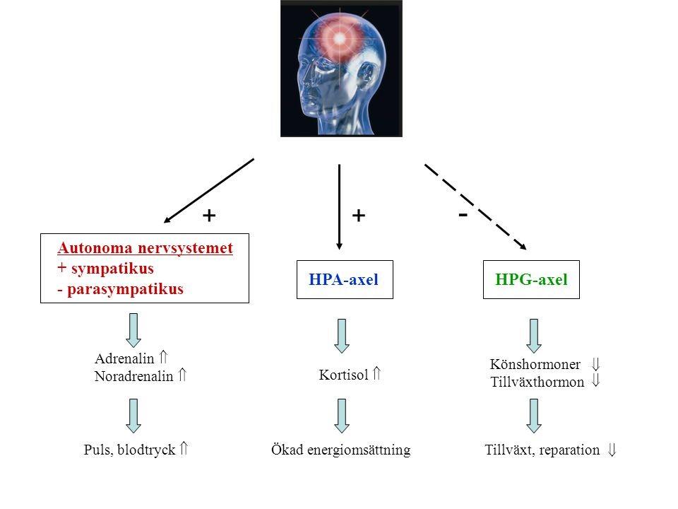 underskott av sköldkörtelhormon